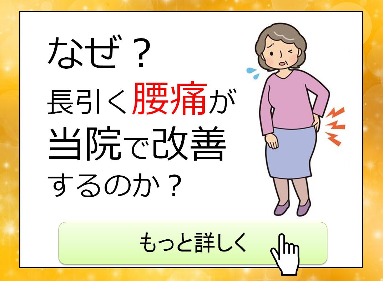 yotukuwashiku
